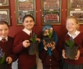 Green fingers in 5th Class