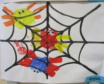 Infant Spider Prints