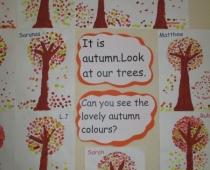 Seniors' Autumn Trees