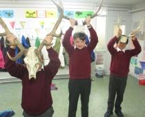 Wild Animals at School