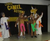"""Lights, Camel, Action!"""